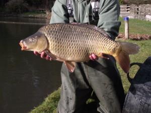 New 22lb carp