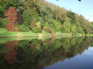 Fishing lake at Malston Mill Farm, Kingsbridge, Devon